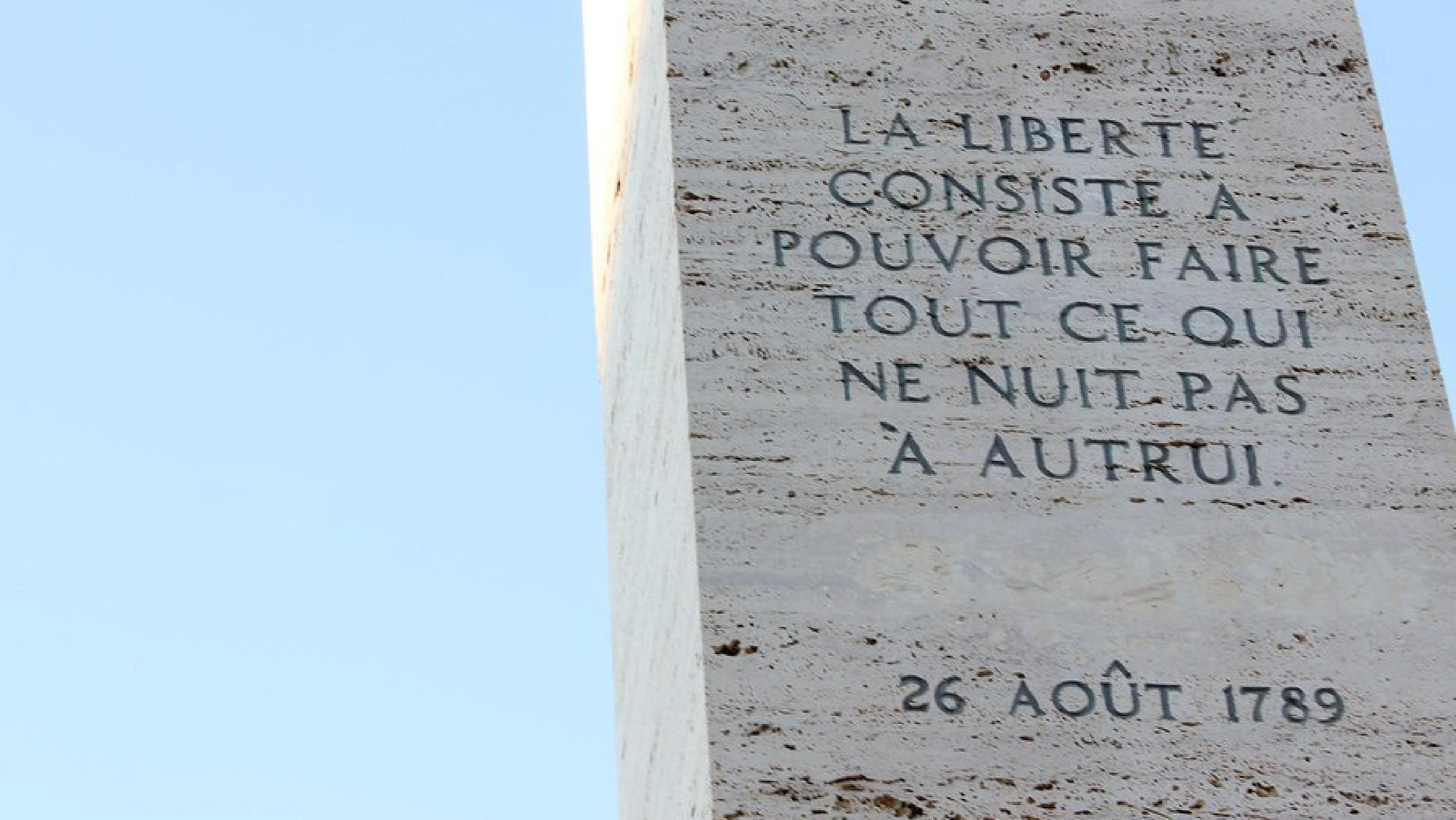 « Le citoyen français a été décrété mineur. » – La DDHC au XXIème siècle