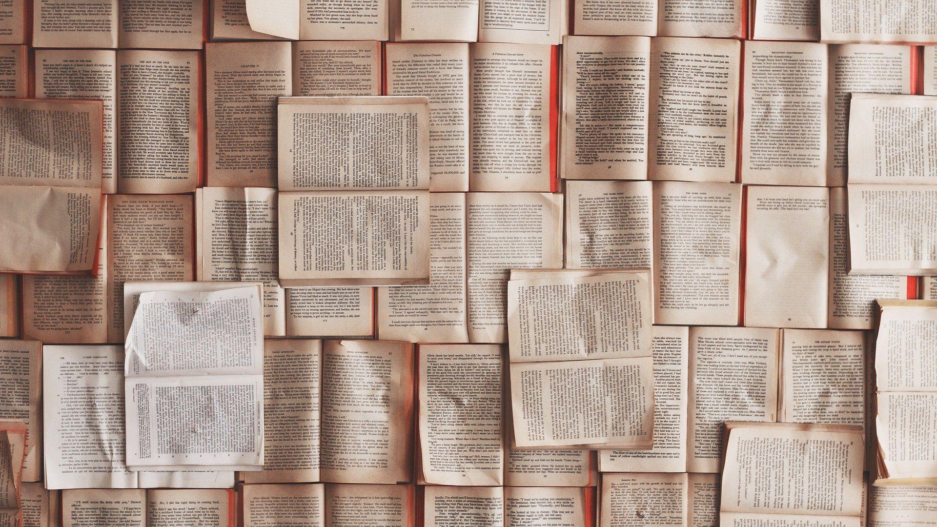 Gaspard Koenig s'introduit dans la bibliothèque de Mario Vargas Llosa