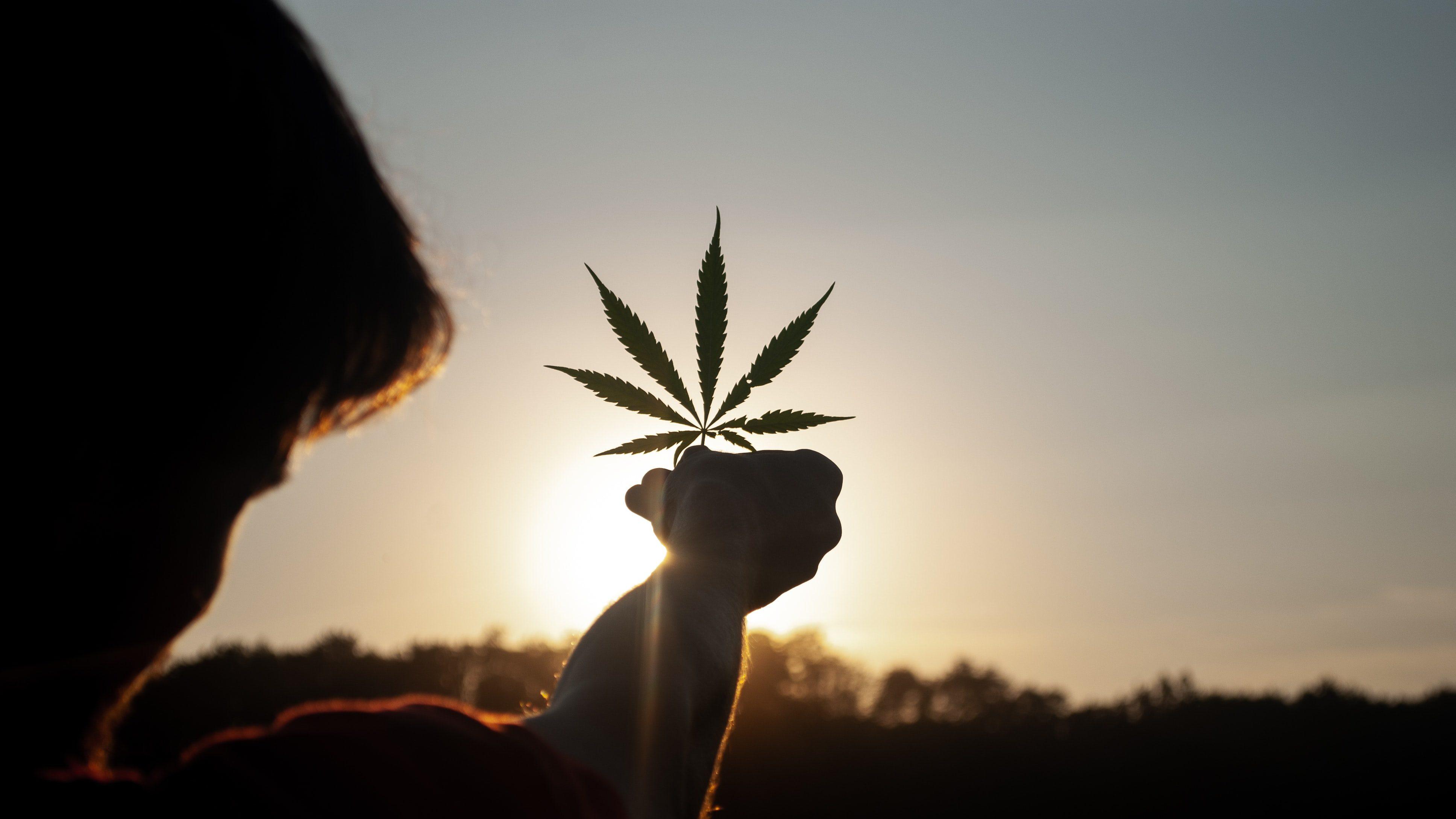 Le cannabis mérite bien une révolution